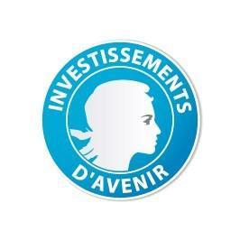 Logo-investissements-d-avenir