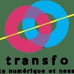 logo Festival Transfo
