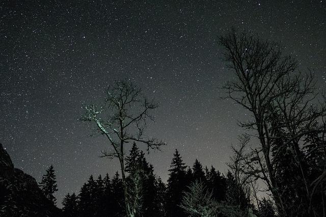 night-2589191_640